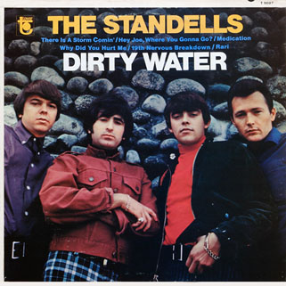 standells lp dirty water tower mono front