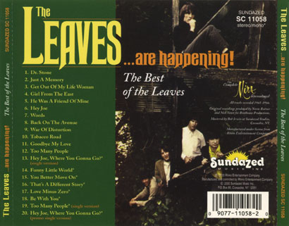 leaves cd leaves are happening tray