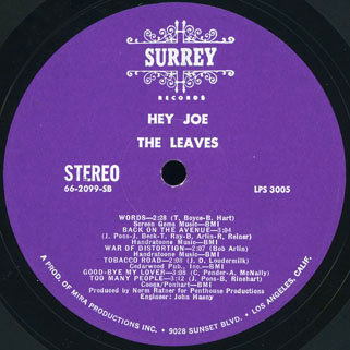leaves lp hey joe surrey label B