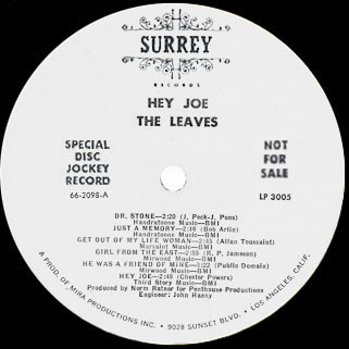 leaves lp  hey joe surrey promo label A
