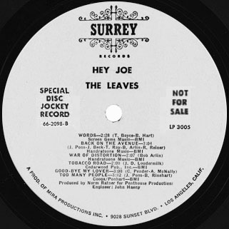 leaves hey joe  lp surrey promo label B