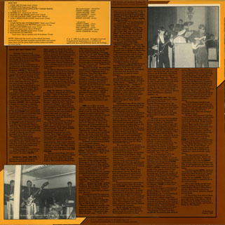 gonn lp history of garage band music volume 9 back cover