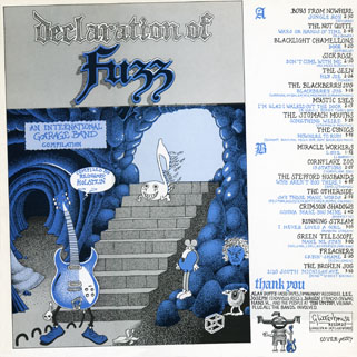 seen lp blue declaration of fuzz back cover