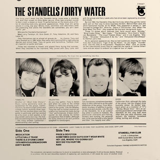 standells lp dirty water tower mono back cover